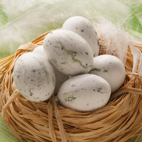 œufs De Mouette Achat En Ligne Biscuits Et Compagnie